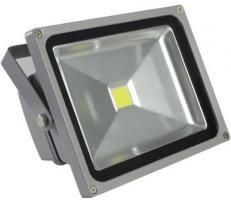 Proiector COB-LED exterior 30W alb rece