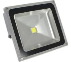 Proiector COB-LED exterior 50W alb rece