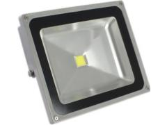OEM Proiector COB-LED exterior 50W alb rece